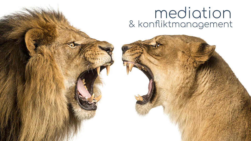 Mediation & Konfliktmanagement