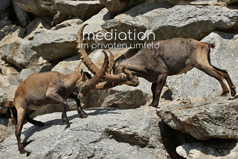Mediation im privaten Umfeld